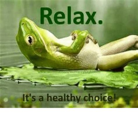 Relaxing Memes - relax it s a healthy choice meme on sizzle