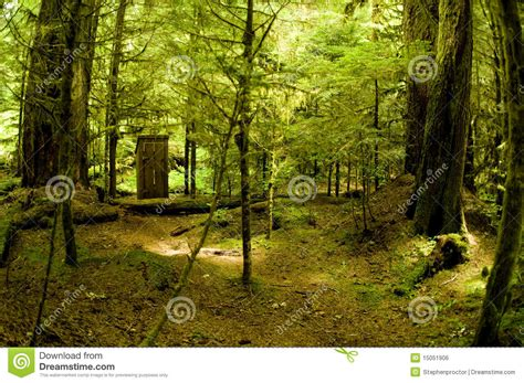 bathroom in the woods bathroom in the woods royalty free stock image image 15051906