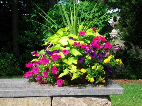 Container Garden Design Ideas Corner Container Gardening Ideas Corner