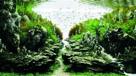 aqua designs weekend diversion aquarium starts with a medium