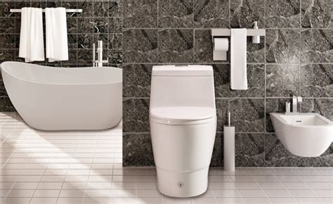 best flushing toilets reviews and buyers guide in 2017