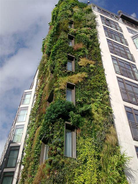 Shade Trellis Green Walls Landscapeislapinski