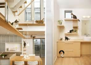 unbelievable cat friendly house design from japan hauspanther