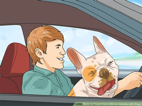 Traveling To The Us From Canada With A Criminal Record How To Travel From Usa To Canada With Dogs 11 Steps