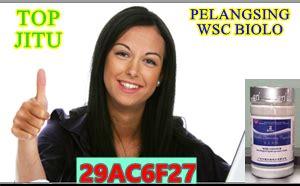 Pelangsing Wsc Biolo pelangsing wsc biolo asli original import april 2016