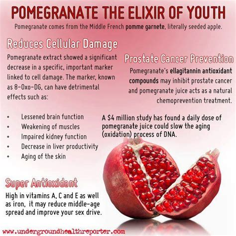 Does Pomegranate Juice Detox by Ground Health Reporter Pomegranate The Elixir Of