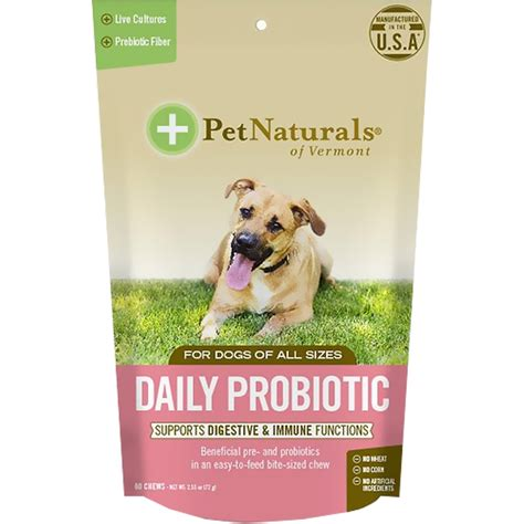 probiotic for dogs pet naturals 174 daily probiotic for dogs 60 chews healthypets