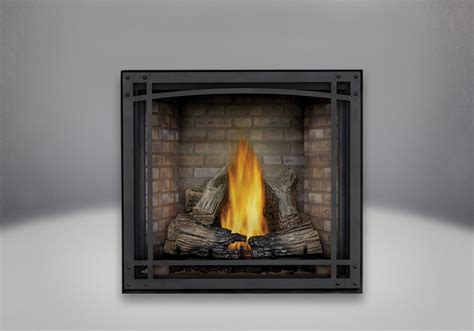 Napoleon Starfire 35 Hdx35 Classic Fireplace And Bbq Safety Screen For Gas Fireplace