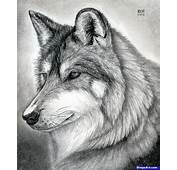 How To Draw A Wolf Head Mexican Step By