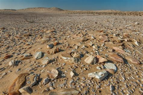 stone desert photo 1745 06 flint stones in a desert on roadside of a