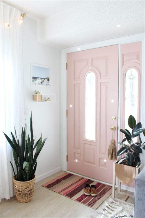 light pink blush front door snake plant  basket