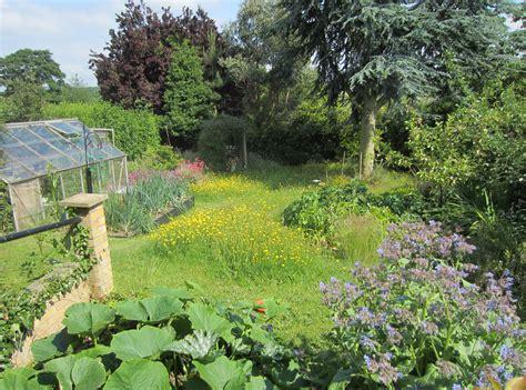 gardening pictures wildlife gardening leicestershire rutland wildlife trust