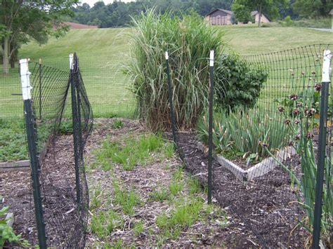 Keeping Deer Out Of The Garden Double Fencing Gardening How To Keep Deer Out Of Vegetable Garden
