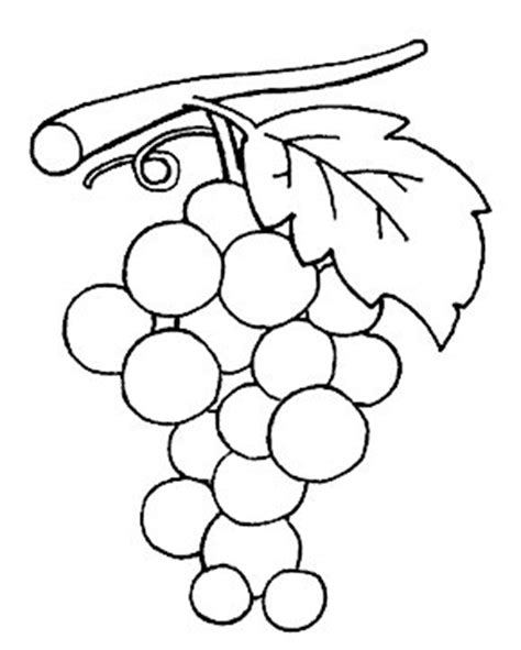 preschool grapes coloring page fruits coloring pages crafts and worksheets for