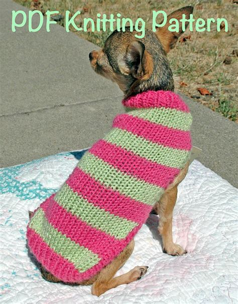 free pattern knit dog sweater easy easy cute dog sweater knitting pattern by dimpleberryhill