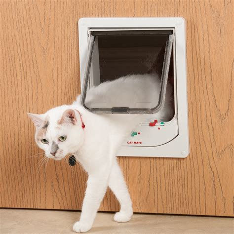 How To Make A Cat Door by The Best Automatic Cat Door Reviews Must Read