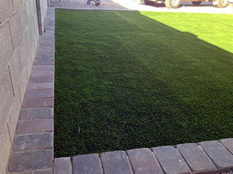 pet turf artificial grass for dogs seattle washington
