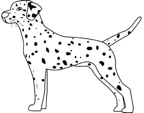 dalmatian puppies coloring pages dalmation coloring pages free