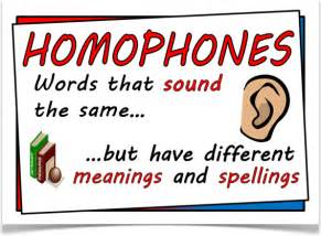 Image result for homophones