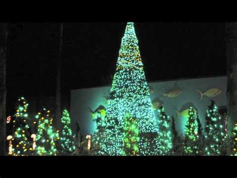 columbia zoo lights columbia riverbanks zoo 2011 mov