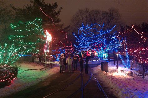 indy zoo christmas lights photo