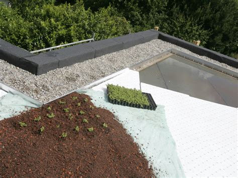 drenaggio giardini pensili lastra in eps drenante per giardini pensili tecnodreno