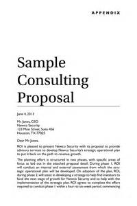 Business Consulting Proposal Template Sample Consulting Proposal Springer