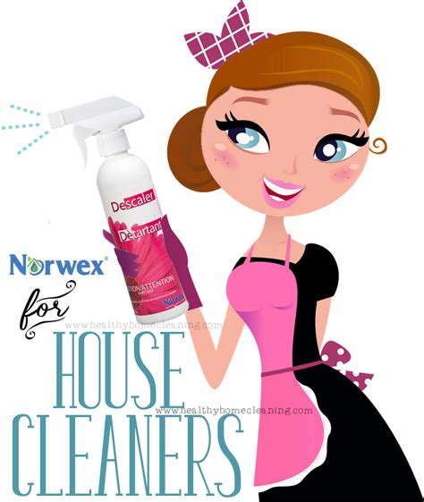 spring cleaners spring cleaning with norwex a room by room guide
