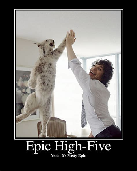 High Five Meme - animal high five memes