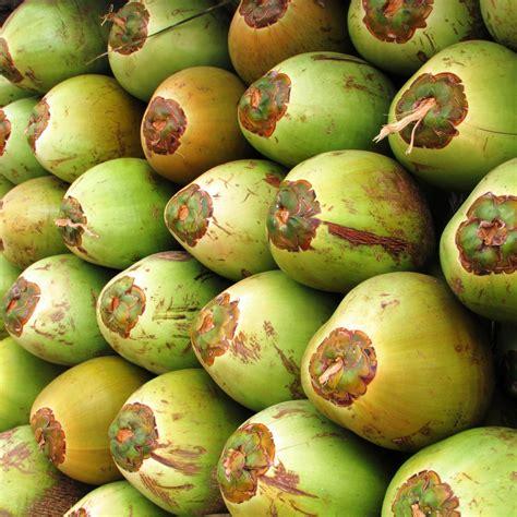 imagenes mercados verdes fotos gratis fruta semilla comida verde produce