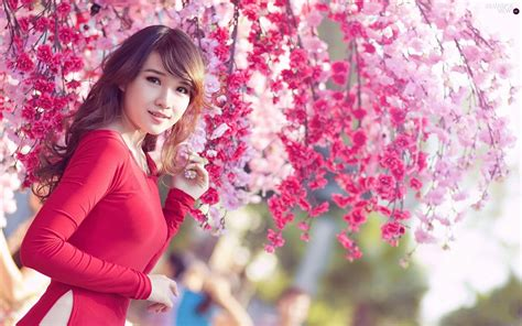 beautiful japanese girls wallpapers ultra high quality