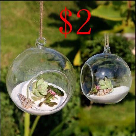 Dijamin Glass Dome Globe 8cm For Terrarium 8pieces dia 8cm hanging glass air plant terrariums balls flower globe vase
