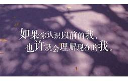 洪湖seo