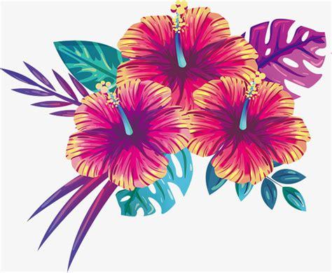 Beautiful Flowers blooming summer flowers vector png beautiful flowers