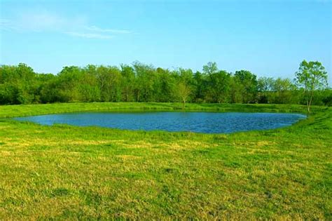Purple Paint Law by 74 Acres For Sale Northeast Of Dallas Tx East Texas Land