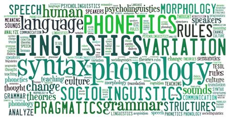 top 5 schools for language and linguistics in the united
