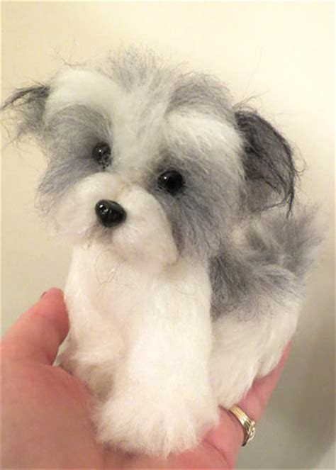 honor havanese reviews havanese brown and white by designs by at the shoppe