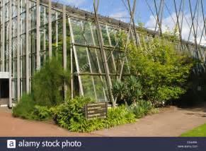 Royal Botanic Garden Edinburgh Glasshouse Stock Photo Royal Botanical Garden Edinburgh