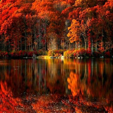 25 best ideas about autumn pictures on fall