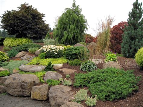 Rock Garden Nursery Evergreen Gardens