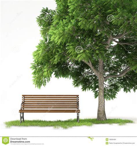 bench under tree isolated bench under tree stock illustration image of
