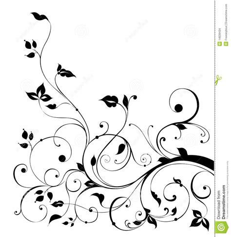 drawing vines pattern black flower and vines pattern stock illustration image