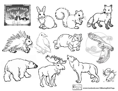 coloring pages of animals that are printable best photos of arctic animals coloring pages polar bears