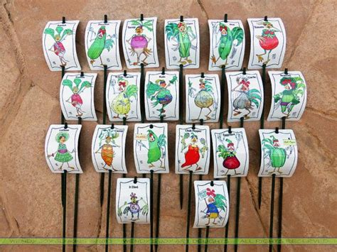 Vegetable Garden Stakes Vegetable Sign 20 Set Garden Marker Stake Name Colorful