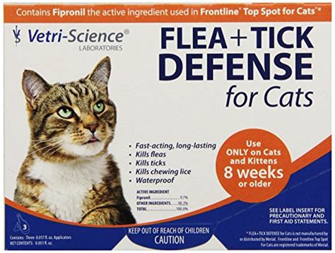 home remedies for cat anemia from fleas the cat problems