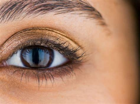 Schminktipps Braune Augen by Schminktipps F 252 R Braune Augen