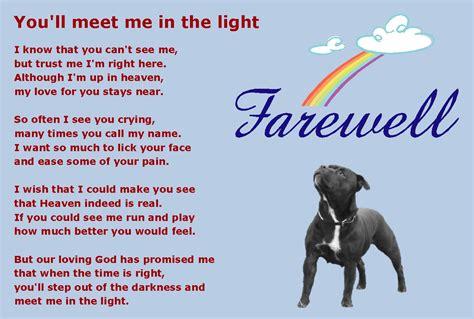 bridge puppies pin printable rainbow bridge poem on