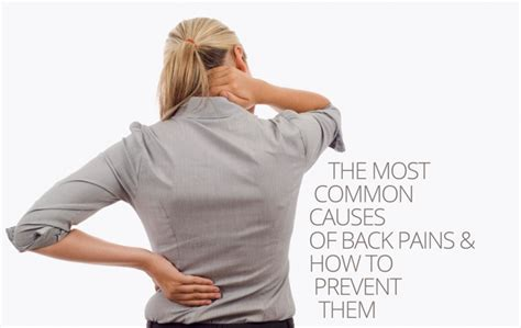 8 Most Common Killers And How To Stop Them by The Most Common Causes Of Back Pains How To Prevent Them