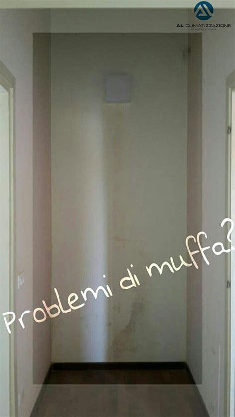 Condensa E Muffa by Soluzioni Contro La Muffa E Condensa In Casa A Brescia E