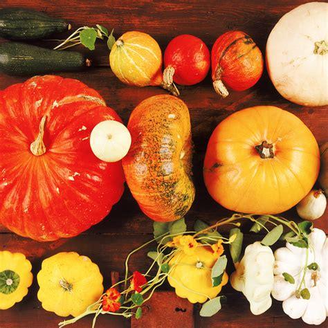 cuisine d automne quels fruits et l 233 gumes de la saison consommer cet automne